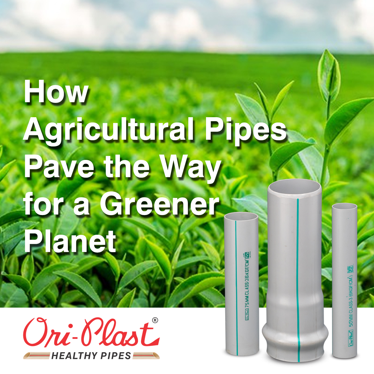 How Agricultural Pipes Pave the Way for a Greener Planet